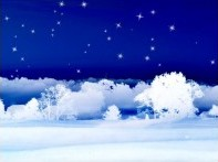 Stars on a Snowy Night