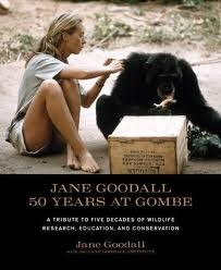 成为珍·古道尔 Being Jane Goodall: Fifty Years at Gombe